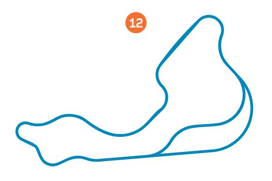 12-Wet Handling Circuit